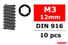 Team Corally - Steel Set Screws M3 x 12mm - Hex - 10 pcs
